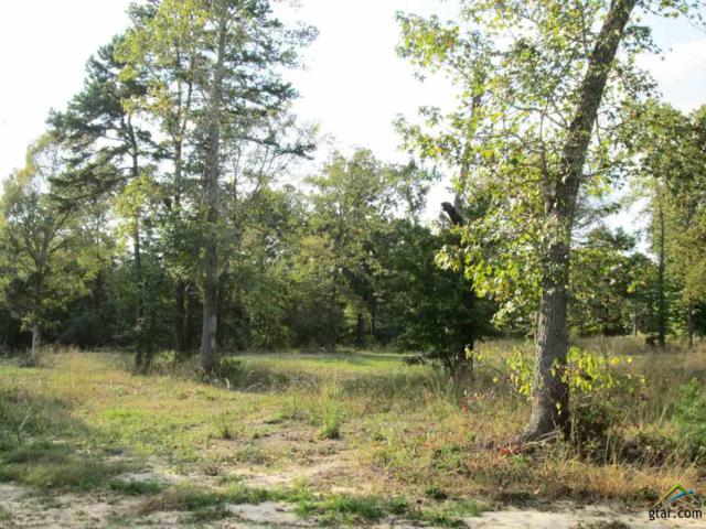 Lot 44 Willow Creek Ranch Rd, Gladewater, TX 75647 (MLS #10074805) :: The Wampler Wolf Team