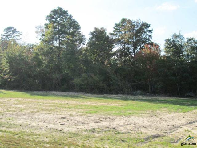 Lot 45 Willow Creek Ranch Rd, Gladewater, TX 75647 (MLS #10074806) :: The Wampler Wolf Team