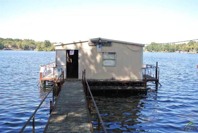 Lot 9 W Lakeshore (Shoreline West), Jacksonville, TX 75766 (MLS #10074891) :: RE/MAX Professionals - The Burks Team