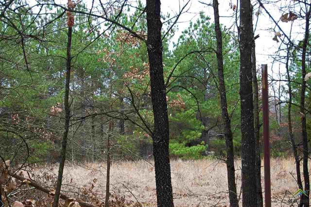 TBD Cr 1342 (Lot #7), Mt Pleasant, TX 75455 (MLS #10077215) :: RE/MAX Impact