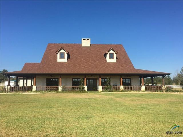 3432 N State Highway 87, Center, TX 75935 (MLS #10078229) :: RE/MAX Impact