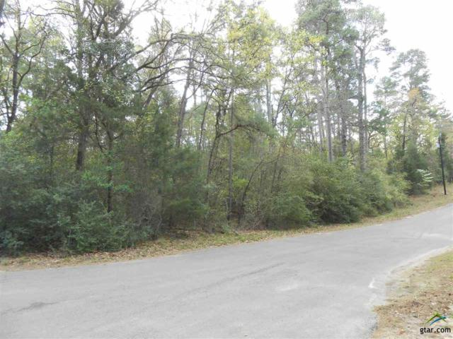 Lot 228 Evening Shadow Trail, Holly Lake Ranch, TX 75765 (MLS #10079444) :: RE/MAX Professionals - The Burks Team