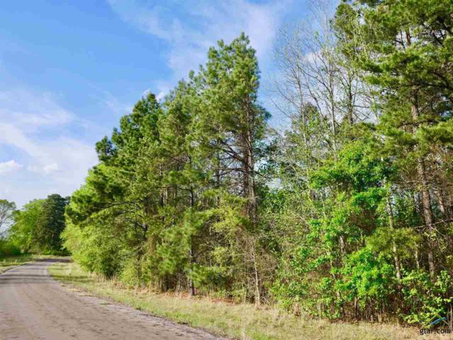 TR #4 TBD Cr 245, Kilgore, TX 75662 (MLS #10079662) :: RE/MAX Impact
