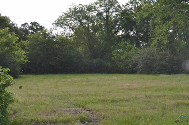 Lot 27 W Elmwood Dr, Mt Vernon, TX 75457 (MLS #10081045) :: RE/MAX Professionals - The Burks Team
