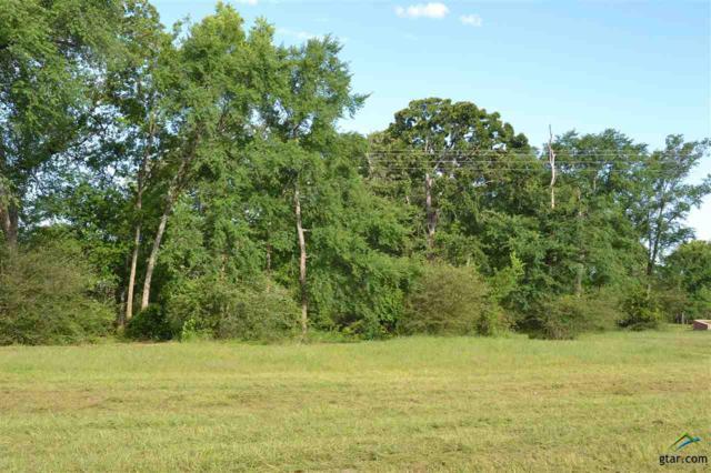 Lot 31 E Elmwood Dr, Mt Vernon, TX 75457 (MLS #10081461) :: RE/MAX Professionals - The Burks Team