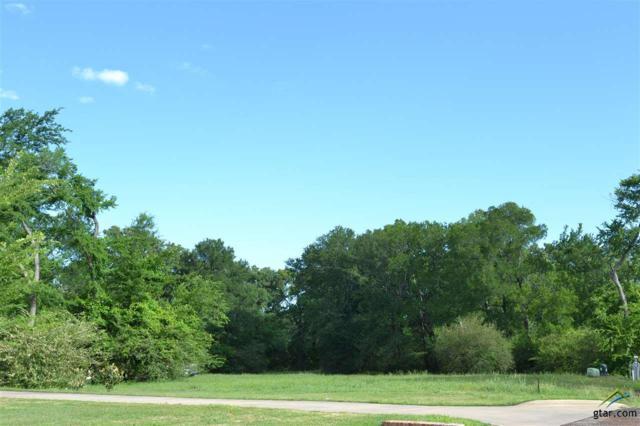 Lot 34 & 35 E Elmwood Dr, Mt Vernon, TX 75457 (MLS #10081464) :: RE/MAX Professionals - The Burks Team
