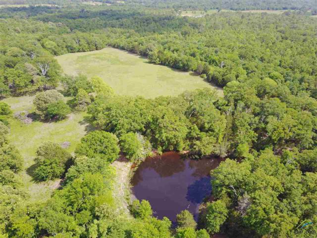 3725 Fm 1652, Grand Saline, TX 75140 (MLS #10082522) :: RE/MAX Impact