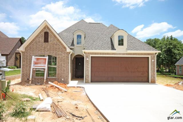 7384 Lake Pointe Cove, Tyler, TX 75703 (MLS #10083130) :: RE/MAX Impact