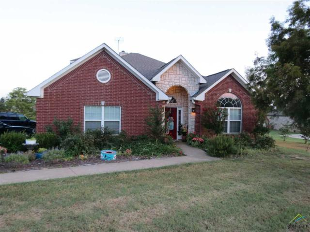 16861 Stallion Shores Ct., Lindale, TX 75771 (MLS #10083515) :: The Wampler Wolf Team