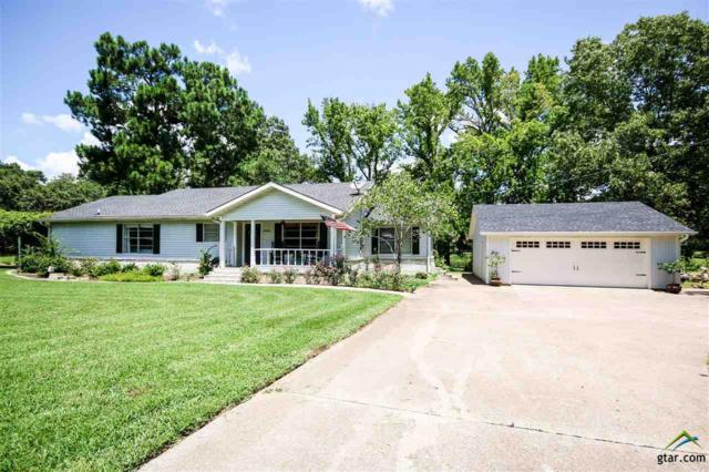 18248 W Lakeview Dr, Troup, TX 75789 (MLS #10084004) :: The Rose City Team