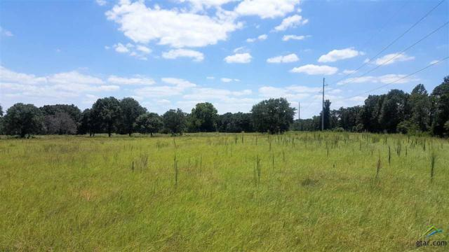 0 Vz Cr 4709 Tract B, Ben Wheeler, TX 75754 (MLS #10084785) :: The Wampler Wolf Team