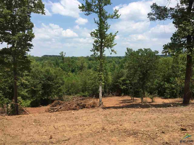 TBD County Road 113, Tyler, TX 75703 (MLS #10085212) :: The Wampler Wolf Team