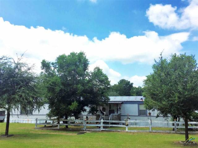 21329 Cr 482, Lindale, TX 75771 (MLS #10085229) :: The Rose City Team