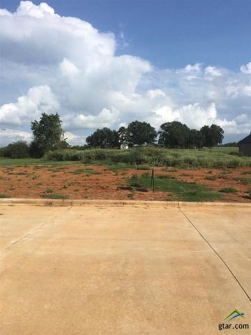 124 Heritage Way, Bullard, TX 75757 (MLS #10085234) :: RE/MAX Impact