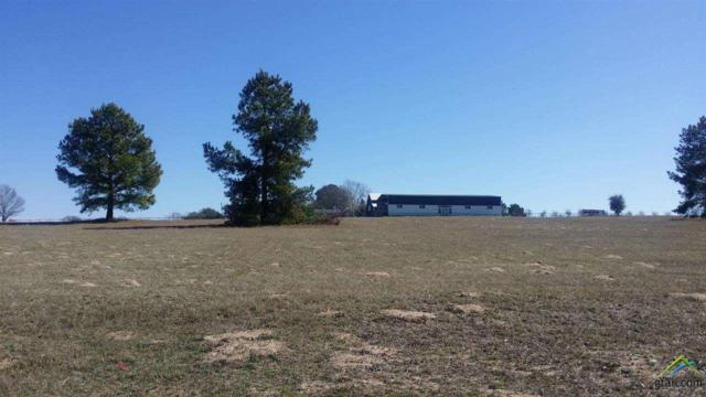 13628 Cattle Baron Drive, Lindale, TX 75771 (MLS #10085306) :: The Rose City Team
