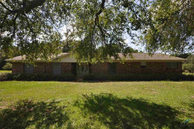 147 Cr 2325, Mineola, TX 75773 (MLS #10085312) :: RE/MAX Professionals - The Burks Team