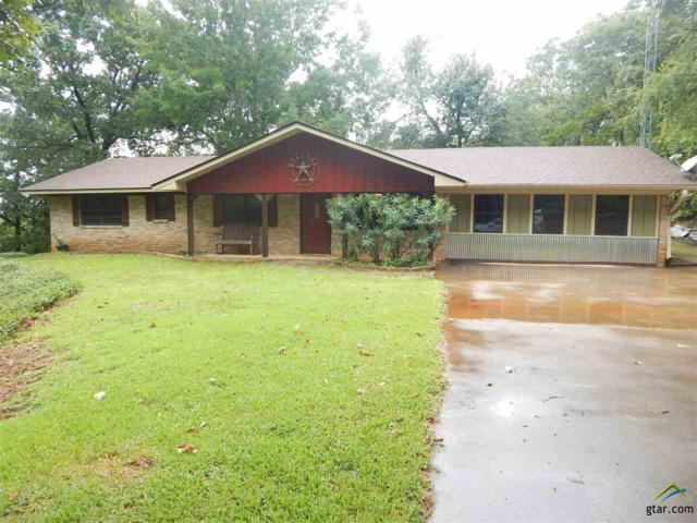 20410 Cr 2171, Whitehouse, TX 75791 (MLS #10085427) :: The Rose City Team