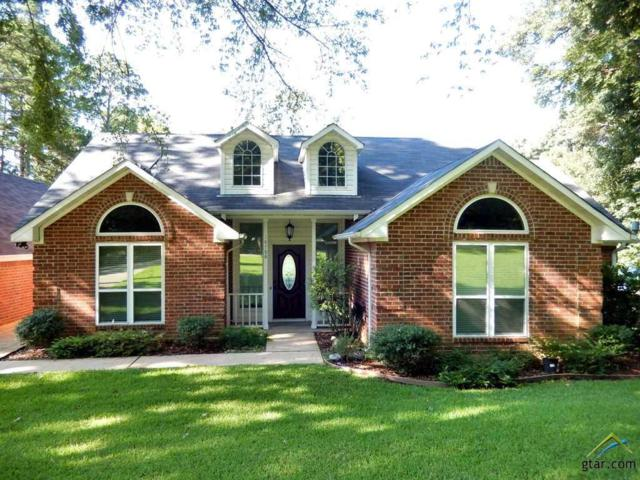 18788 Paradise Lane, Flint, TX 75762 (MLS #10085459) :: RE/MAX Impact