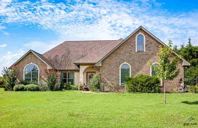 29 Cedarwood Lane, Mt Vernon, TX 75457 (MLS #10085461) :: RE/MAX Impact