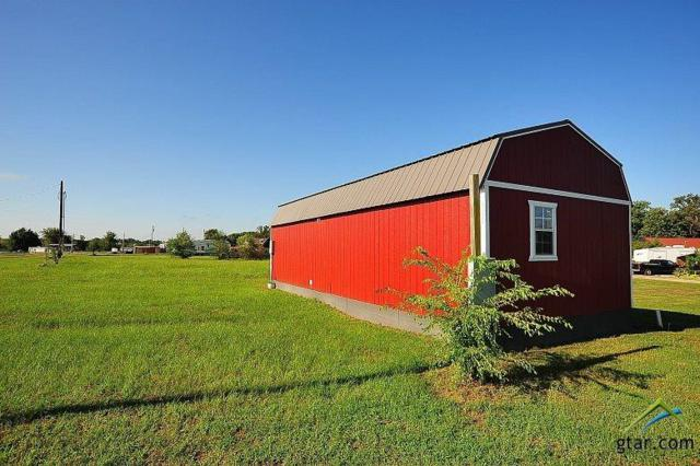 175 Mohican, Quitman, TX 75783 (MLS #10085489) :: The Rose City Team