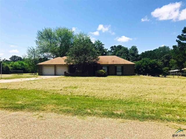 31 Cr 4162, Pittsburg, TX 75686 (MLS #10085501) :: The Rose City Team