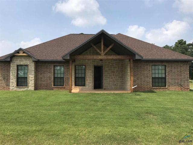 21189 County Road 119, Tyler, TX 75703 (MLS #10085721) :: The Wampler Wolf Team