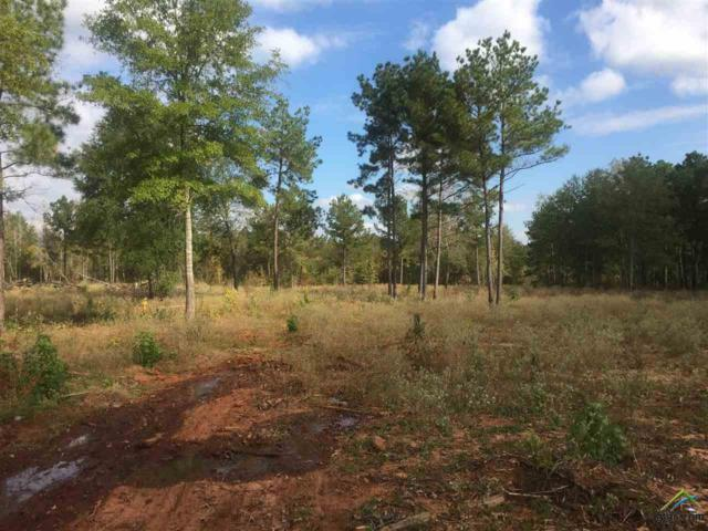 TBD County Road 119, Tyler, TX 75703 (MLS #10085847) :: The Wampler Wolf Team