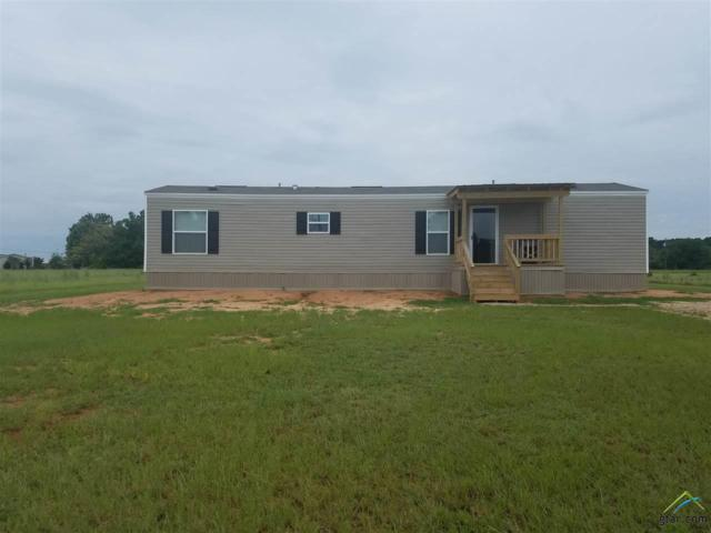313 Meadow St., Bullard, TX 75757 (MLS #10085918) :: RE/MAX Impact