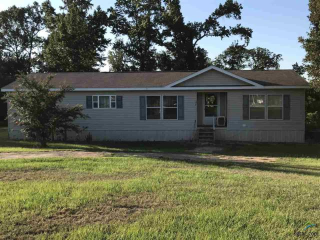 320 Cr 1240, Pittsburg, TX 75686 (MLS #10086059) :: RE/MAX Impact