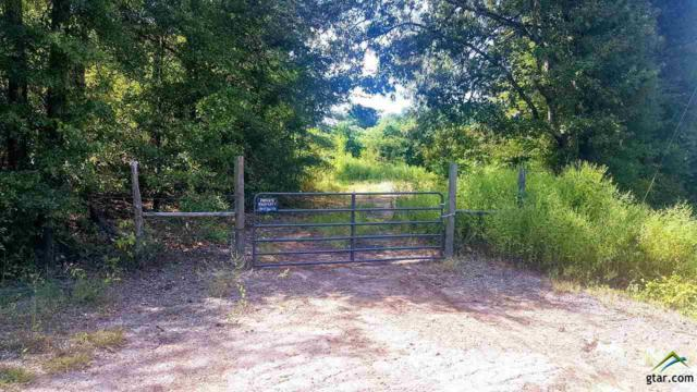 000 Fm 312, Quitman, TX 75783 (MLS #10086212) :: The Wampler Wolf Team