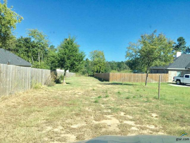 19223 Cr 1102, Tyler, TX 75709 (MLS #10087038) :: The Wampler Wolf Team