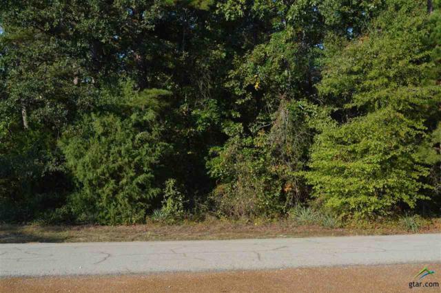 Lot 687 Charlya Drive, Mt Vernon, TX 75457 (MLS #10087365) :: RE/MAX Professionals - The Burks Team