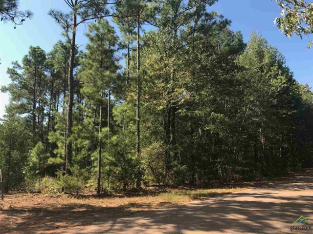 0000 Cr 2110, Troup, TX 75789 (MLS #10087570) :: RE/MAX Impact