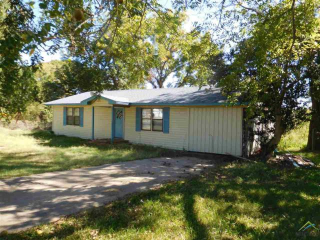 11226 Loop 60, Larue, TX 75770 (MLS #10087584) :: The Rose City Team