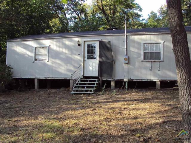 151 Sweetgum Trail, Murchison, TX 75778 (MLS #10087593) :: The Wampler Wolf Team