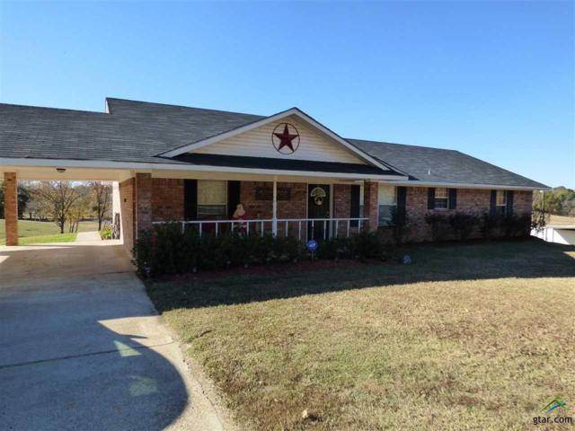 2230 Cr 3330, Mt Pleasant, TX 75455 (MLS #10087692) :: RE/MAX Professionals - The Burks Team