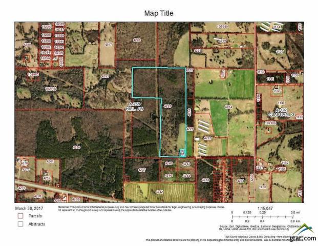 529 Cr 4230, Mt Pleasant, TX 75455 (MLS #10087824) :: RE/MAX Professionals - The Burks Team