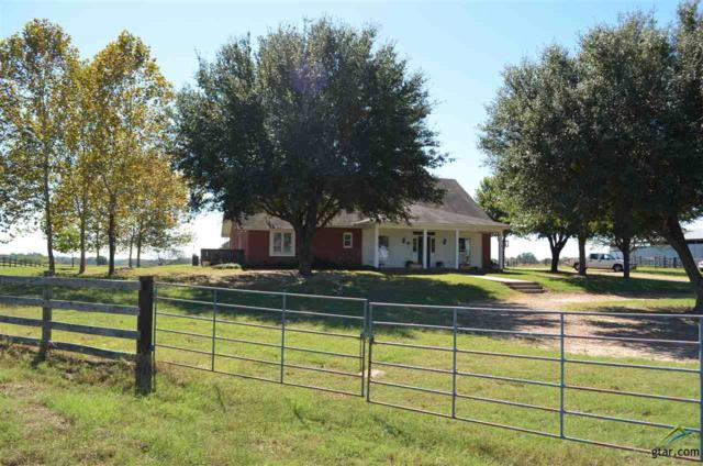 919 County Road 1174, Sulphur Springs, TX 75482 (MLS #10087844) :: RE/MAX Impact