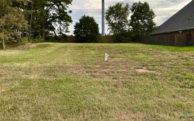 747 Hampton Hill Dr., Tyler, TX 75701 (MLS #10087893) :: RE/MAX Professionals - The Burks Team