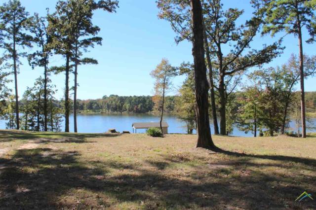 000 Caddo Point Trails, Scroggins, TX 75480 (MLS #10087957) :: RE/MAX Professionals - The Burks Team