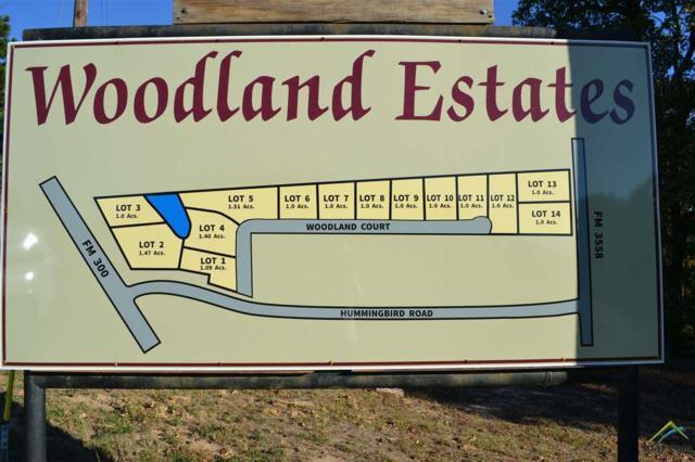 Lot 9 Woodland Court, Gilmer, TX 75644 (MLS #10088024) :: RE/MAX Professionals - The Burks Team