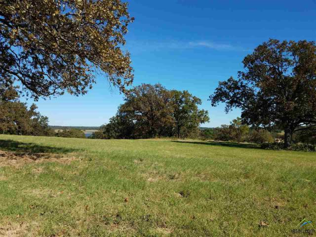 6240 Overlook Point, Athens, TX 75751 (MLS #10088029) :: The Wampler Wolf Team