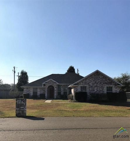 2703 Silver Springs Trail, Mt Pleasant, TX 75455 (MLS #10088183) :: RE/MAX Professionals - The Burks Team