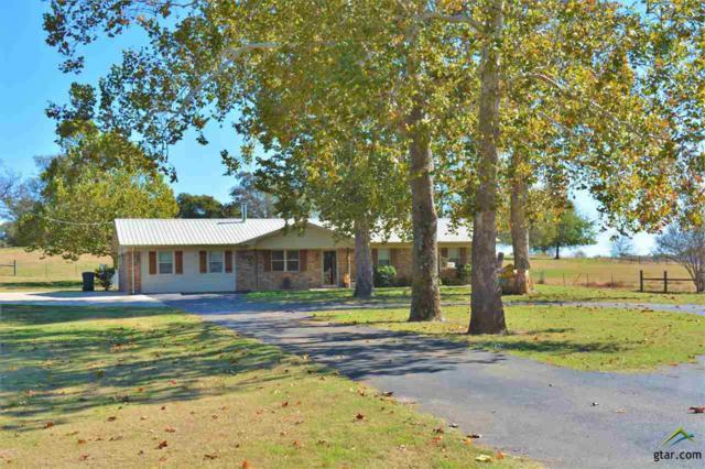 2405 County Road 2391, Pickton, TX 75471 (MLS #10088453) :: RE/MAX Professionals - The Burks Team