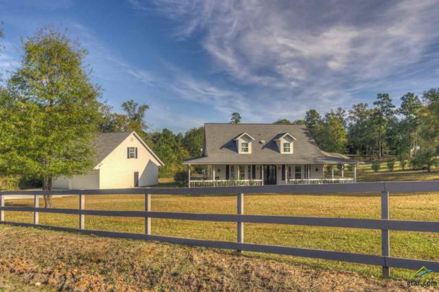 16464 County Line Rd, Gladewater, TX 75647 (MLS #10088704) :: RE/MAX Professionals - The Burks Team