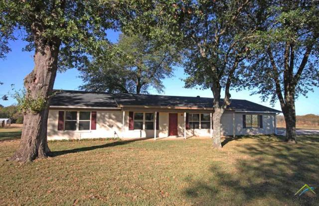 13234 Cr 2134, Whitehouse, TX 75791 (MLS #10088769) :: The Rose City Team