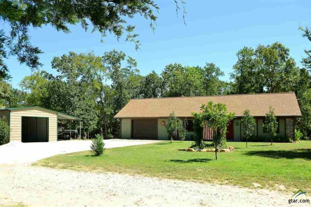 191 County Road 1728, Yantis, TX 75497 (MLS #10088993) :: The Rose City Team