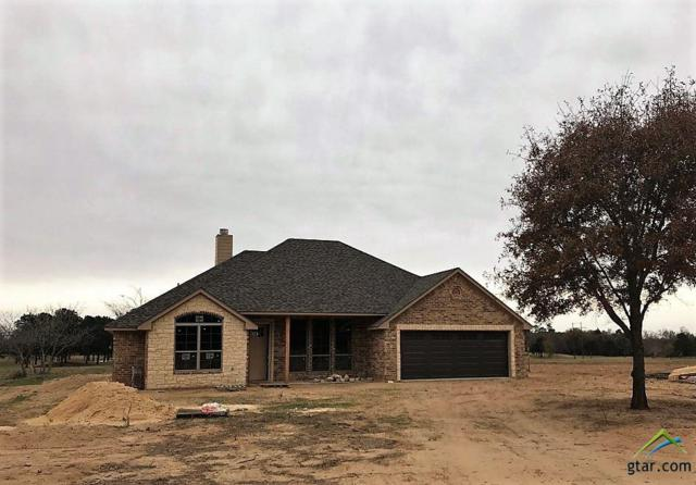 14852 Cr 424, Lindale, TX 75771 (MLS #10089084) :: The Rose City Team