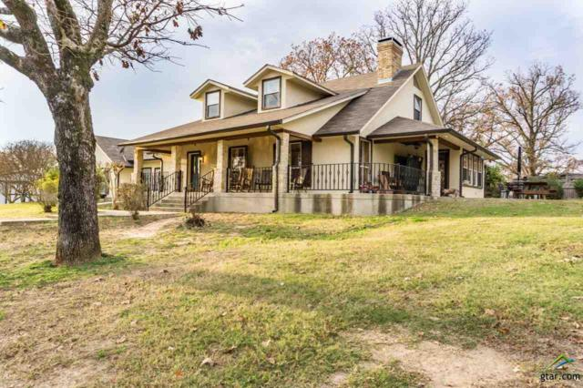 2981 Cr 4701, Troup, TX 75789 (MLS #10089095) :: RE/MAX Professionals - The Burks Team