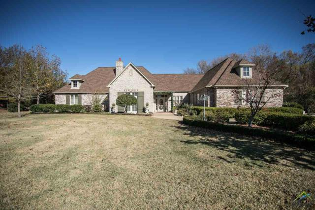 1301 Hermitage Ct, Tyler, TX 75703 (MLS #10089123) :: The Rose City Team